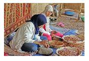 femmes triant de l'argan
